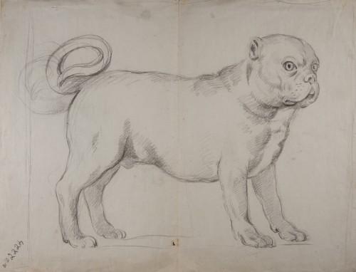 A Dog - Antonio Carnicero