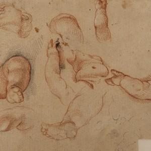 Study of the Head, Torso, Hands and Legs of a Boy - Francisco Ignacio Ruiz de la Iglesia