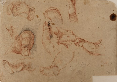 Study of the Head, Torso, Hands and Legs of a Boy - Francisco Ignacio Ruiz de la Iglesia